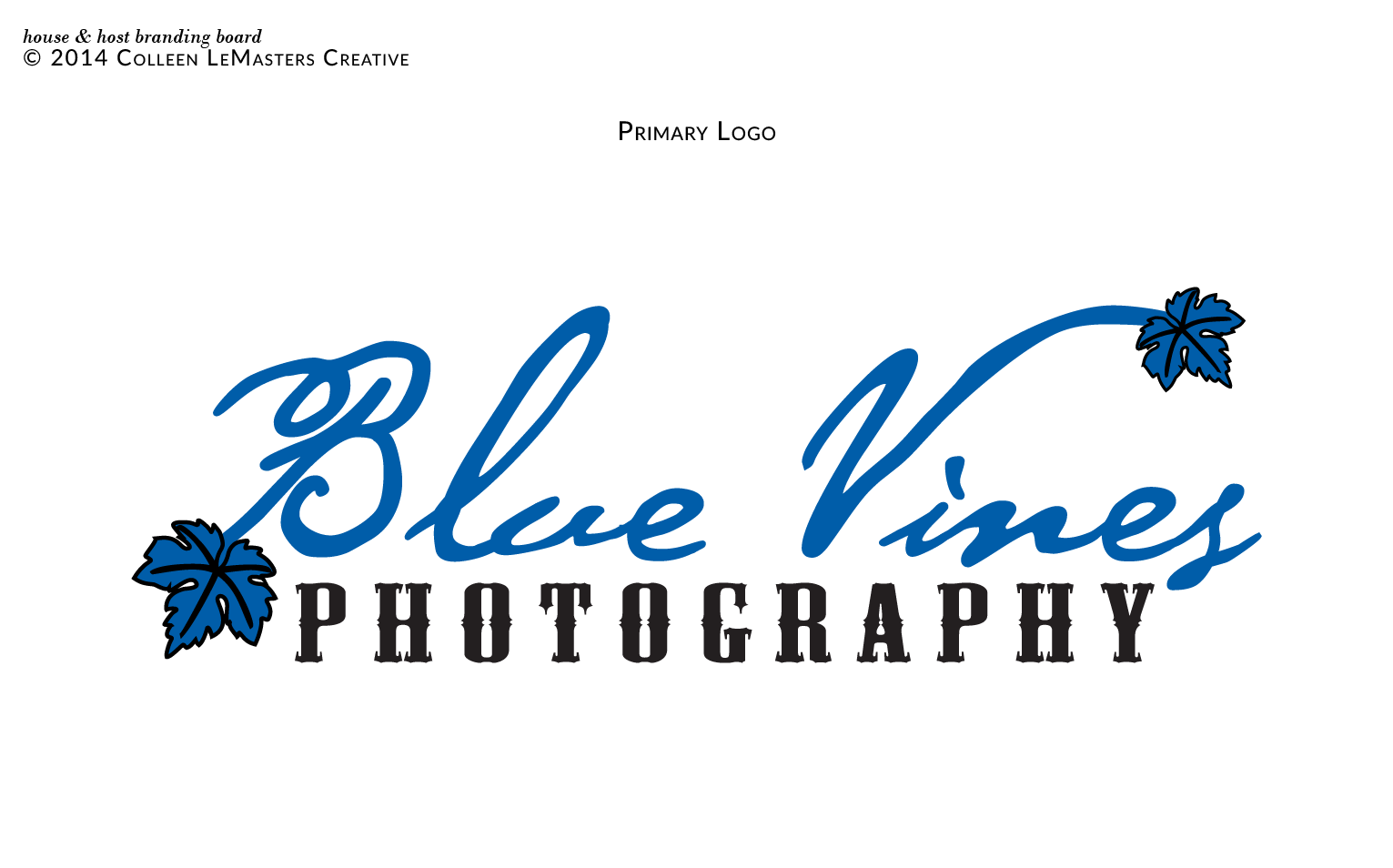 Blue Vines Photography