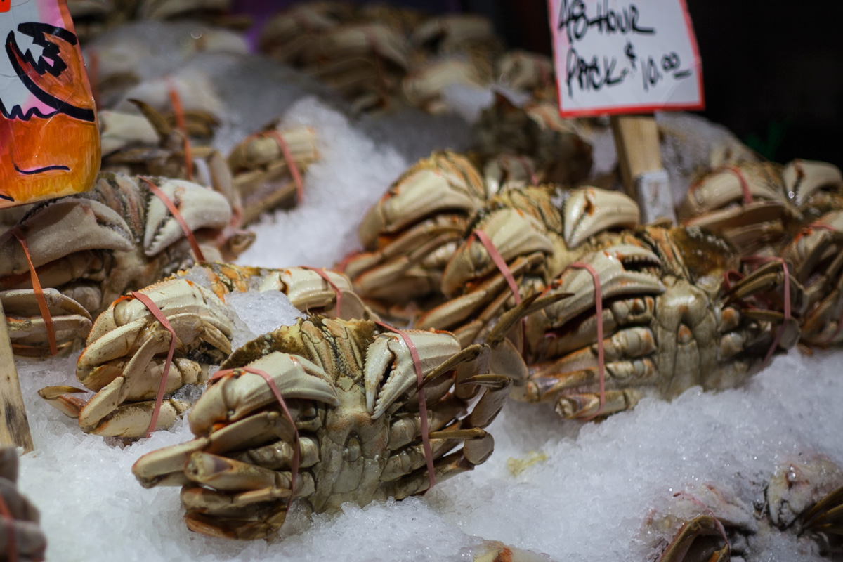 Dungeness crabs, back when they were safe to eat? // pike place market