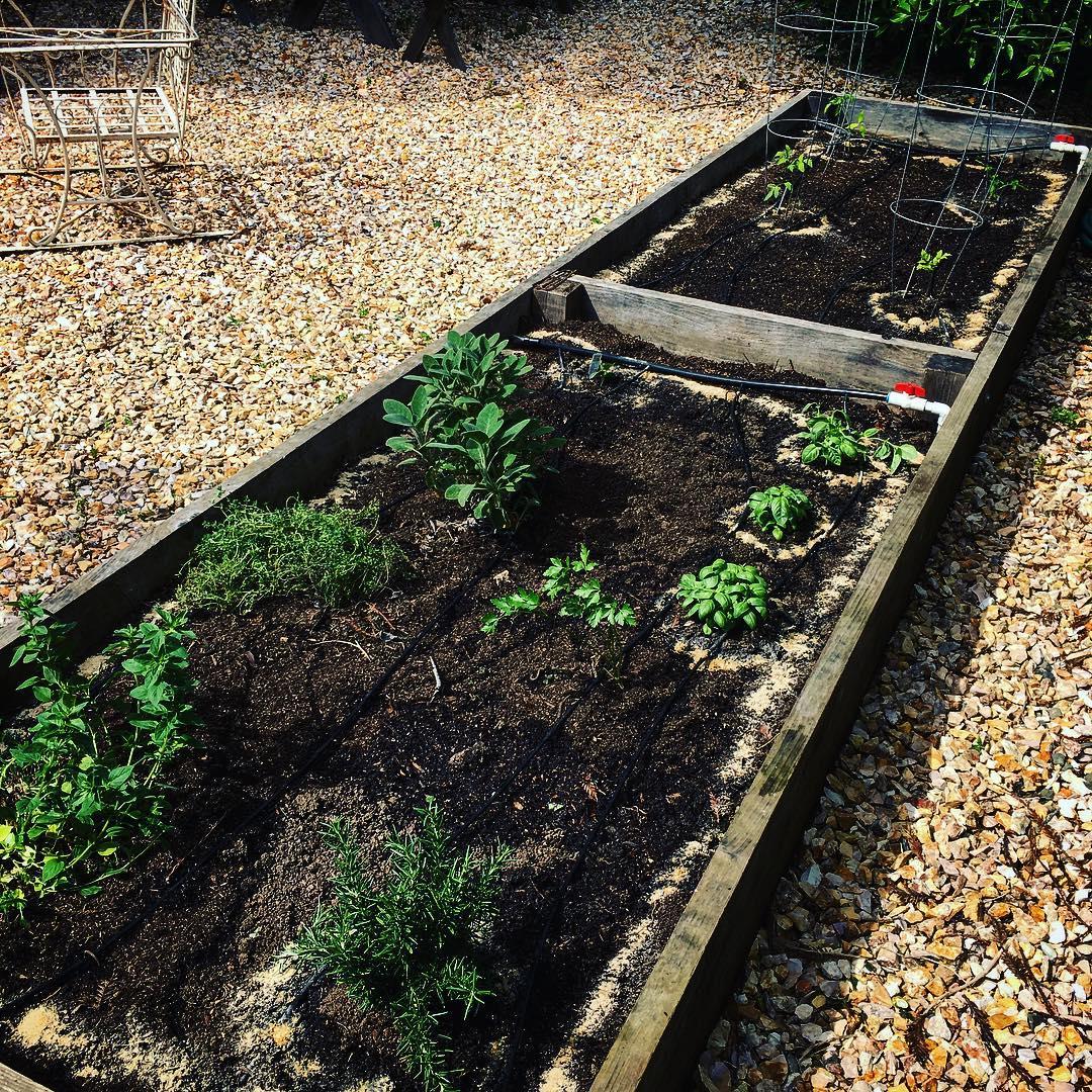 April-2016_garden