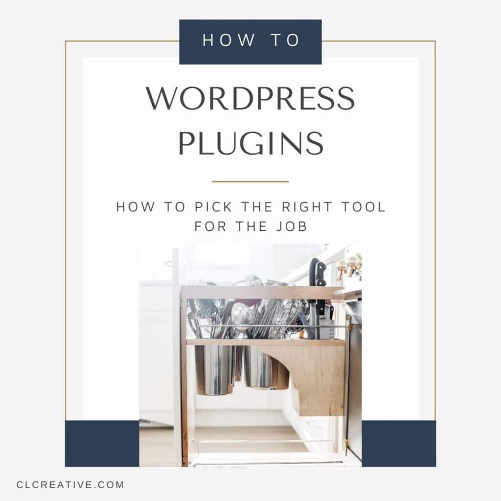 Poster image for Choosing the Right WordPress Plugin blog